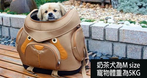 Daisuki 後背包小型寵物袋(奶茶犬) M號 雙肩後背式寵物袋 寵物外出包 手推車 外出籠 FD01-MC