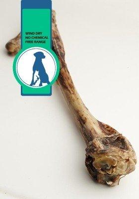 紐西蘭 100% 天然寵物零食-鹿小腿/一包一入
