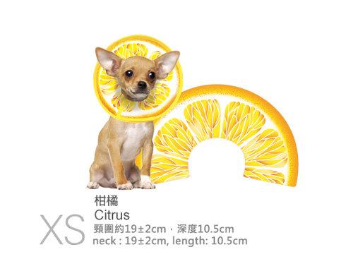 伊莉莎白寵物項圈-柑橘(橘子)/項圈/頸圈/頭套/防咬保護套/XS/頸圍約17公分