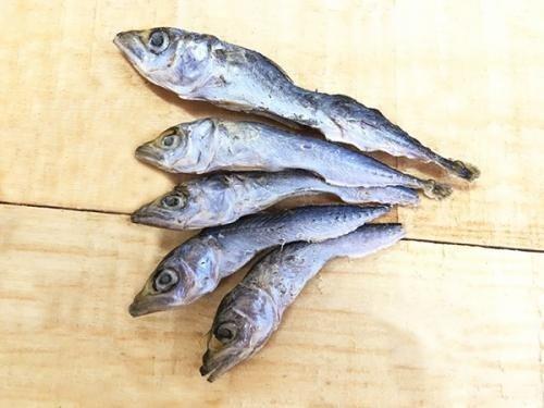 日本Michinokufarm魚系列-小青花魚(犬貓可用)20g(純天然無添加零食)