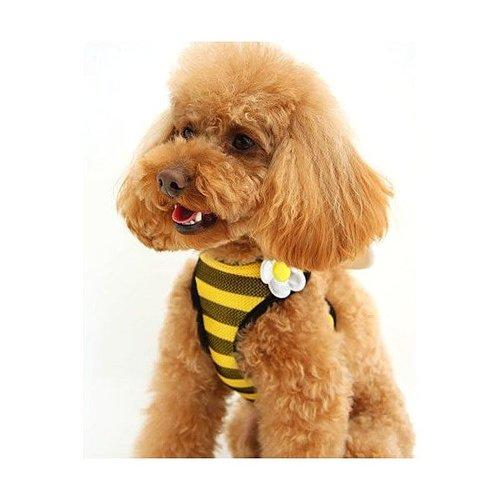 Pet Paradise 日本進口 narikiri pets 採蜜小蜜蜂 貓犬用網狀鞍帶胸背(附牽繩) SS 透氣素材