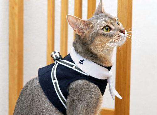 犬と生活(犬與生活) 寵物貓專用 水手領夏日胸背 粉紅海軍藍 (內附保冷劑) 尺寸M號