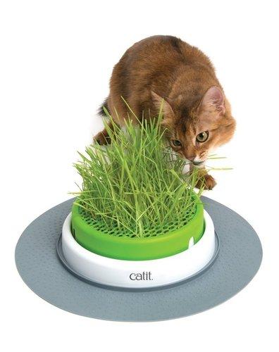 CATIT 2.0 貓草種植盤 DIY 可種植貓草 賣場另有竣寶貓草可購買