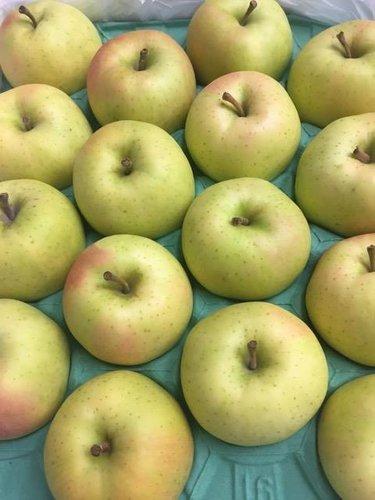 日本青森縣TOKI水蜜桃蘋果-免運費